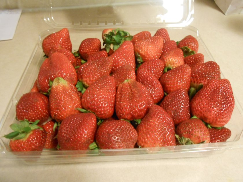FRESH STRAWBERRIES 1