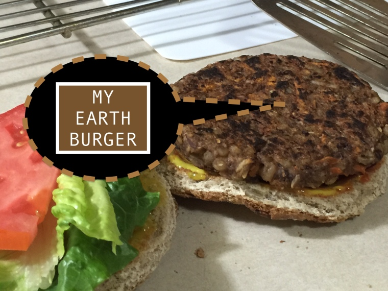 EARTH BURGER FAT FREE 2 copy